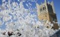 Воздушные шары голуби украсят собой любое торжество